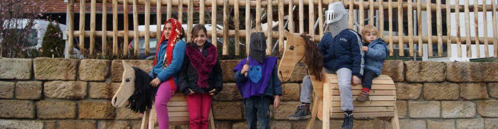 cropped-pferde-2-o
